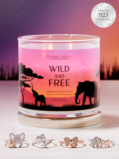 Charmed Aroma jewel soy scented candle with Silver Ring 12 oz 340 g - Wild & Free